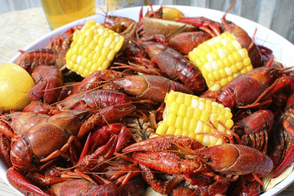 crawfish-fort-bend-county-tx