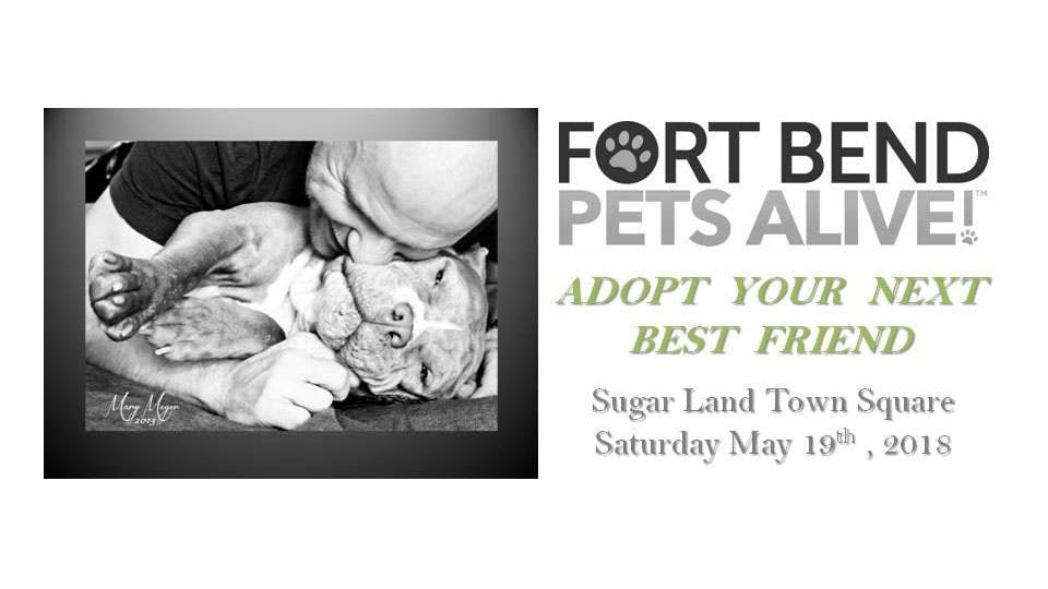 Fort-Bend-Pets-Alive-Shelter-Pet-Expo