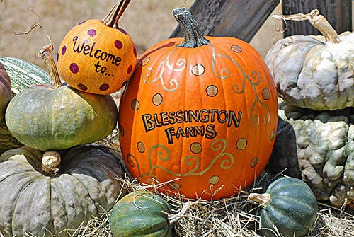 Blessington-Farms-Opening-Day-Fall-Festivities-4