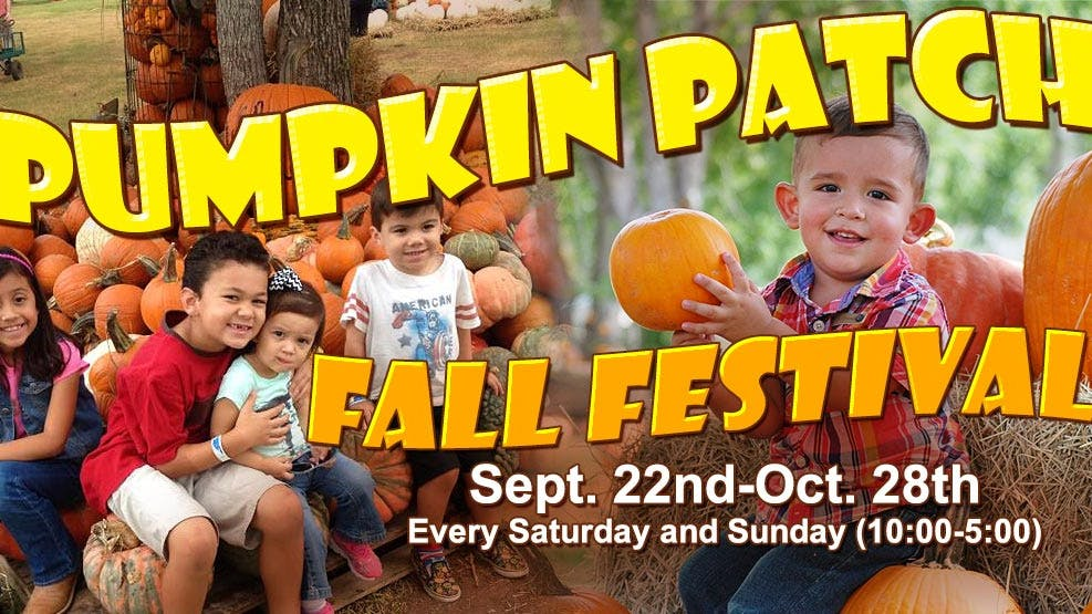 Blessington-Farms-Pumpkin-Patch-Fall-Festival-2018