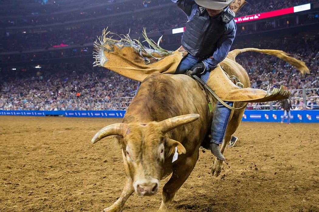 2019 Houston Livestock Show And Rodeo Season Tickets On