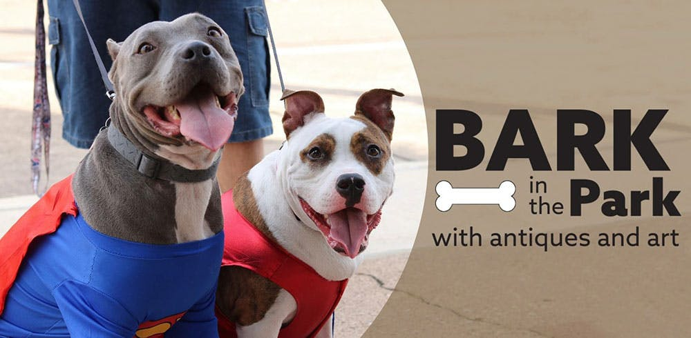 bark-in-the-park-halloween-fort-bend-texas