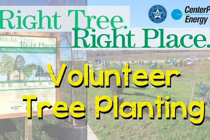 Right-Tree-Right-Place-Volunteer-Tree-Planting-sugar-land-tx