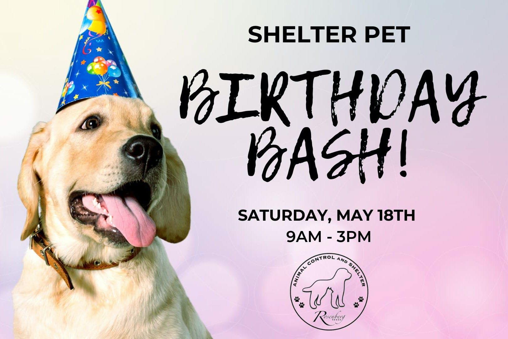 animal-shelter-birthday-bash-rosenberg-tx
