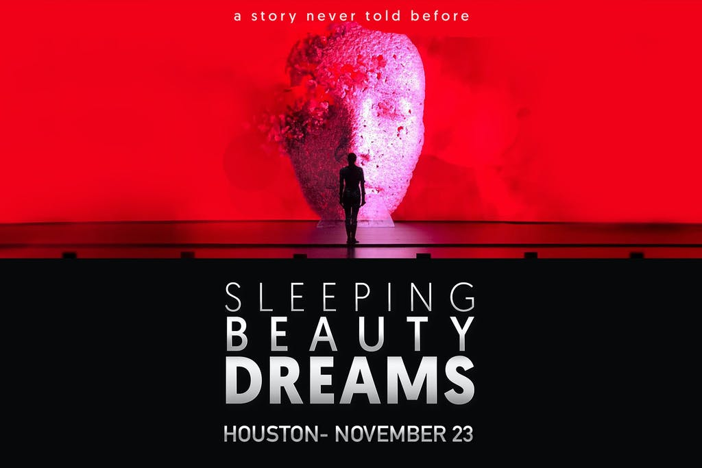 sleeping-beauty-dreams-sugar-land-tx